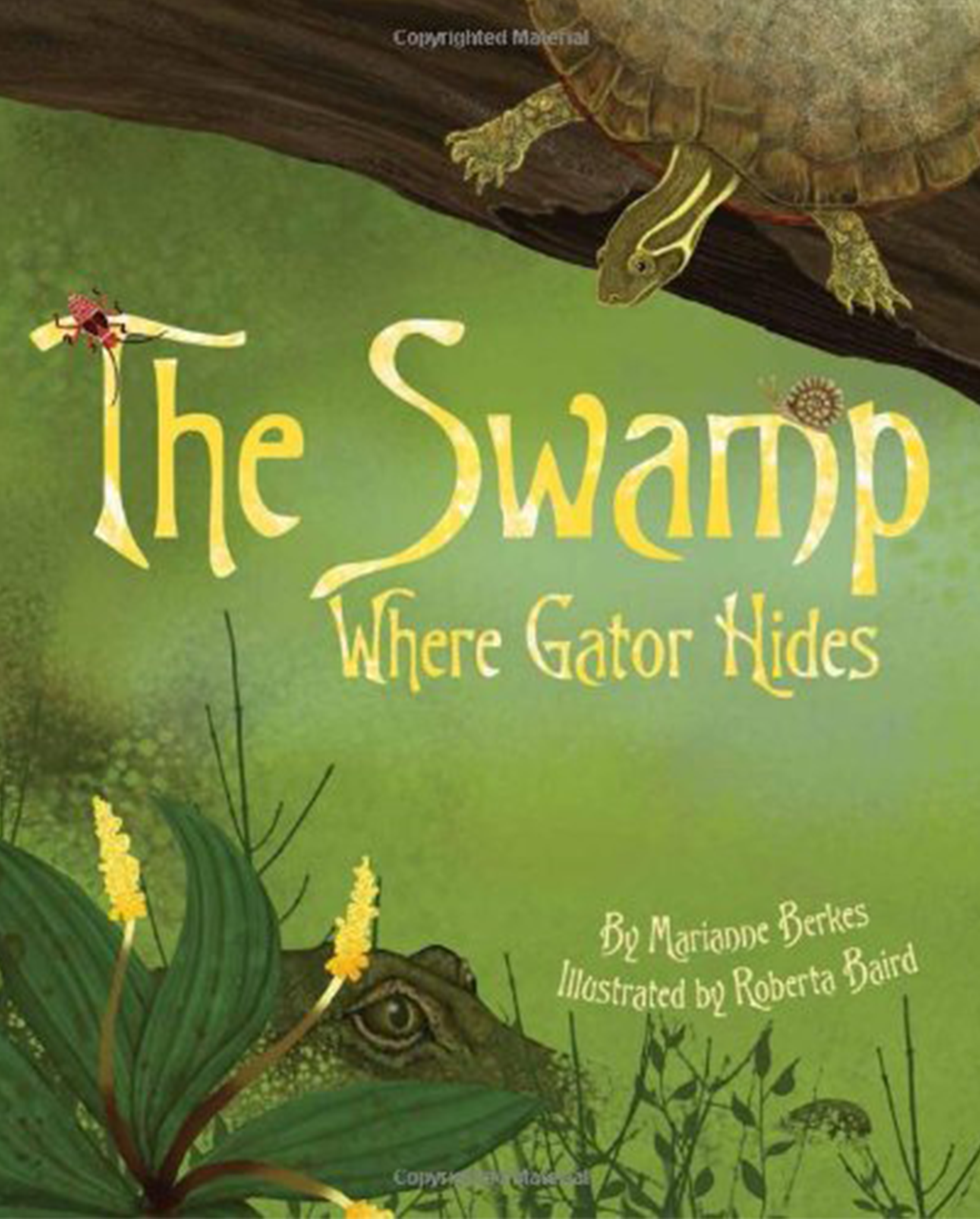 The Swamp Where the Gator Hides