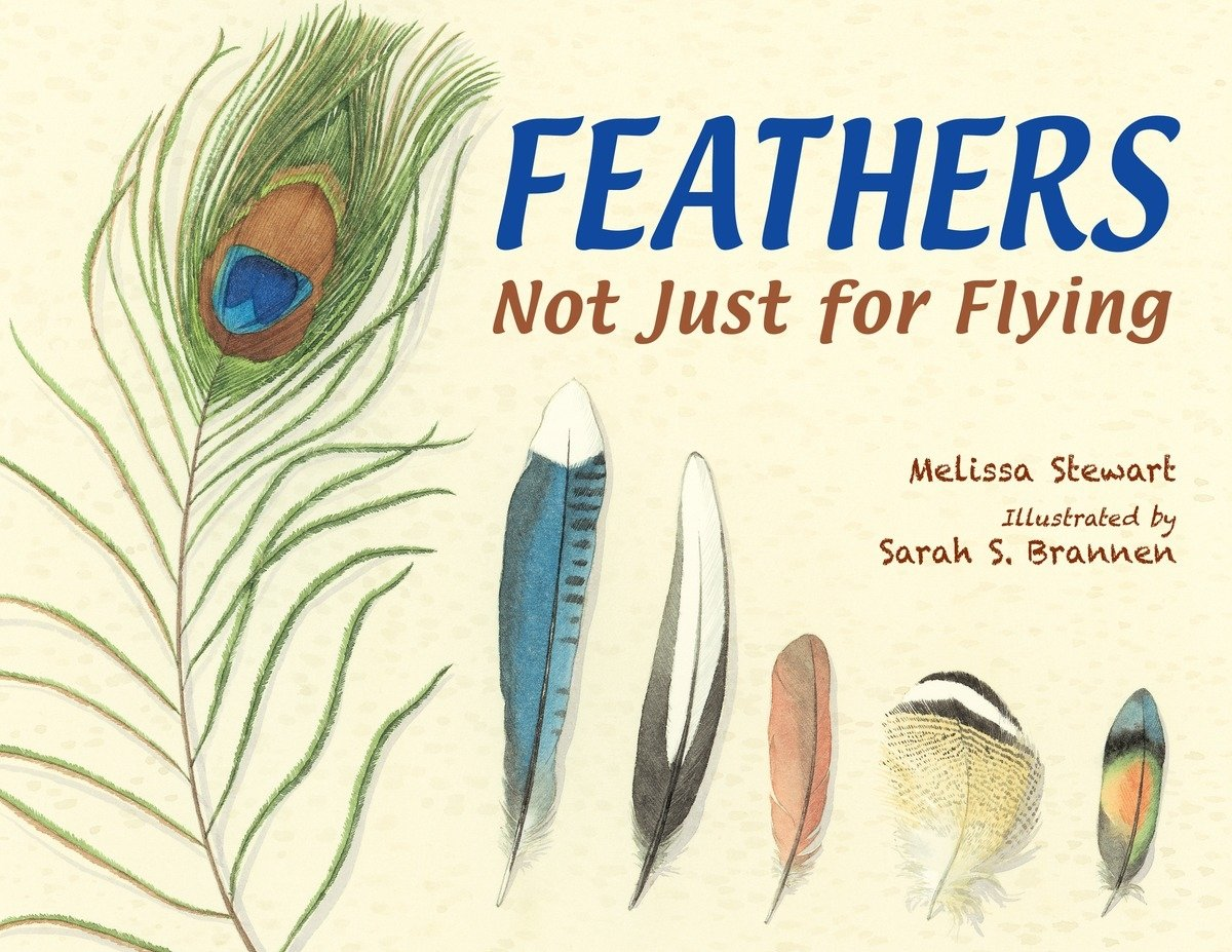 Cover of Feathers: Not Just for Flying
