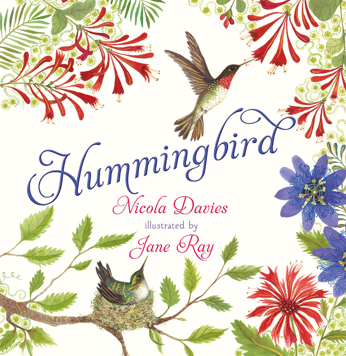 """Cover or of """"Hummingbird"""""""